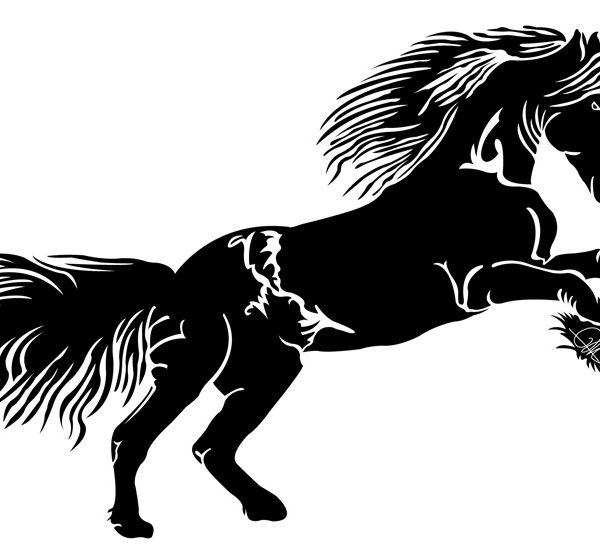 Dessin Vectoriel de cheval, positif sur Illustrator By Charles Landston