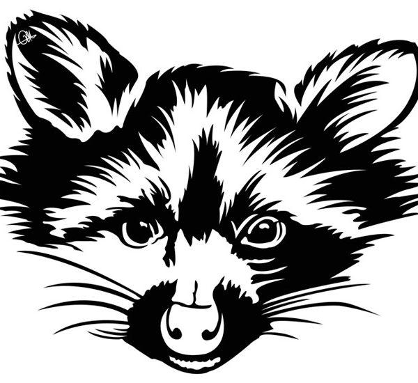 Dessins noir et blanc Raton By Charles Landston
