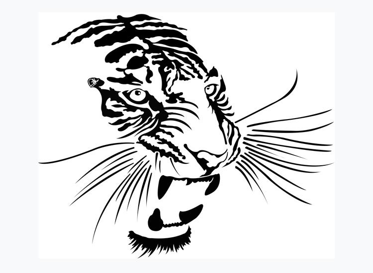 Dessin Vectoriel de tigre, positif sur Illustrator By Charles Landston