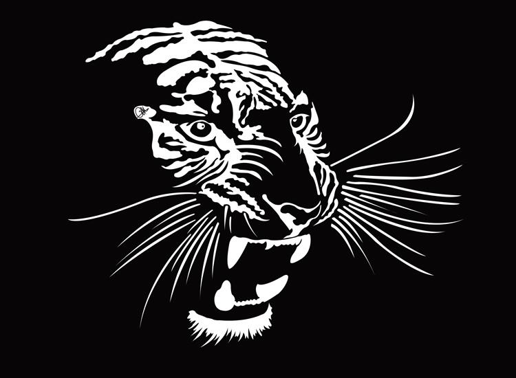 Dessin Vectoriel de tigre, negatif sur Illustrator By Charles Landston