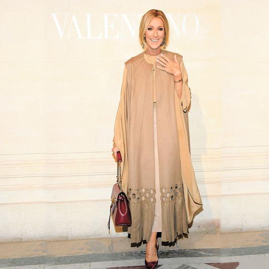 Céline Dion Elegant and Natural