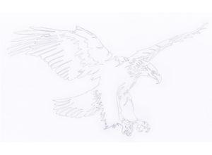 Blazer homme personnalisable_Doublure au dessin de l'aigle par Charles Landston la créatrice et styliste_Dessin au trait de crayon